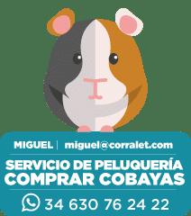 ICONOS-CORRALET-Miguel-Cobayas